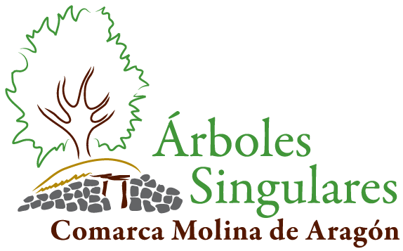 LOGO ÁRBOLES SINGULARES