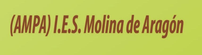AMPA-ies Molina