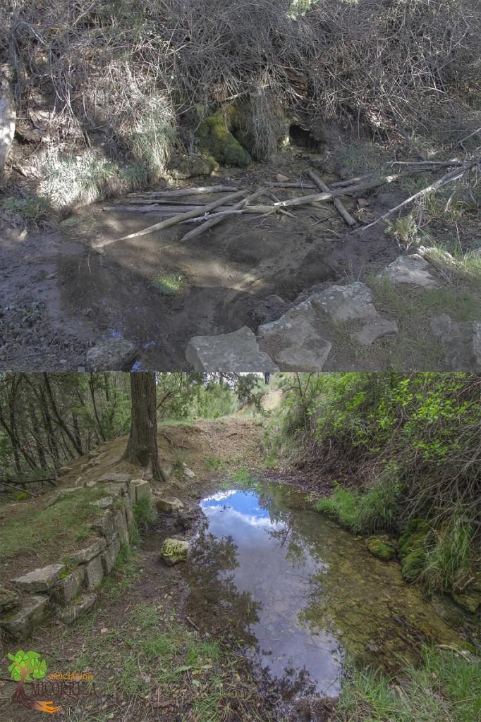 Limpieza de la antigua balsa de riego