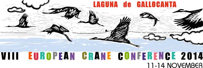 Congreso Europeo sobre las Grullas_Gallocanta_Zaragoza