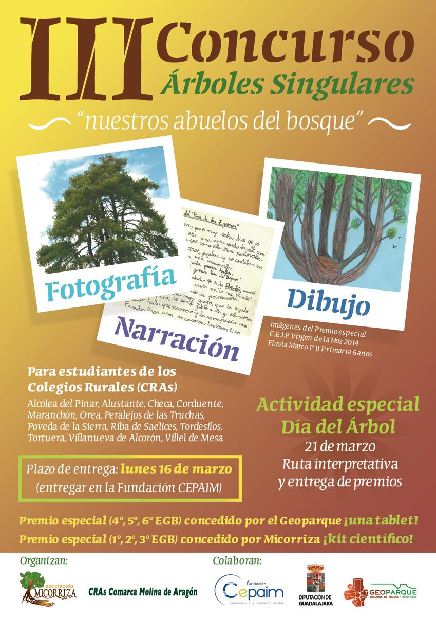 3_cartel_concurso_arboles_cras