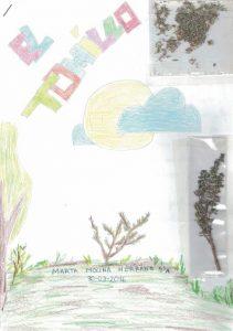 Portada de El Tomillo, presentado por Marta Molina (4º primaria, CEIP Virgen de la Hoz)
